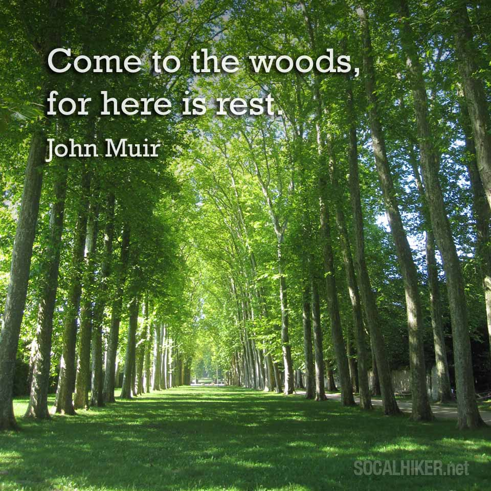 Muir Monday: Come to the woods, for here is rest. - John Muir