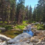 Middle Fork of the Merced River