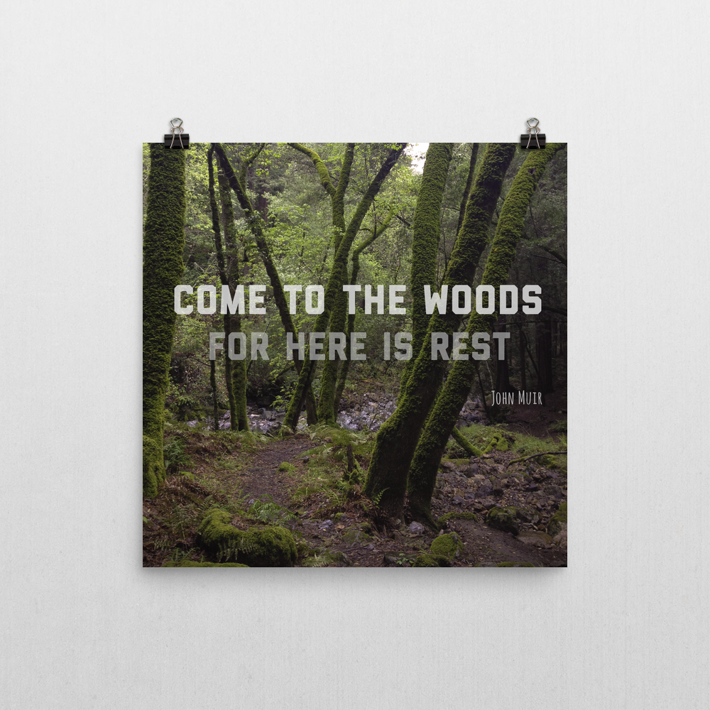 Poster - Come to the woods