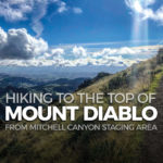 Hiking from Mitchell Canyon Staging to the summit of Mount Diablo