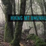 Hiking Mount Umunhum