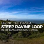 Hiking the Dipsea-Steep Ravine Loop in Mt Tamalpais State Park