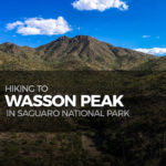 Hiking to Wasson Peak in Saguaro National Park