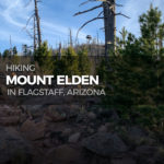 Hiking Mount Elden in the Coconino National Forest