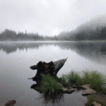 Foggy Morning at Reflection Lake on the Wonderland Trail
